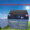 Solar Lighting Battery Solar Power Inverter Battery 12V 42ah