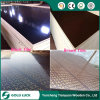 18mm Shuttering Plywood, Black/Brown Film Faced Plywood