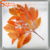Home Decoration Wholesale Artificial PE Maple Leaves