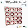 High-Lumens COB Uranus 16 LED Grow Light for Commercial Cultivation