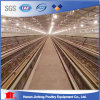 Layer Cages for Pakistan Poultry Farm Chicken Raising