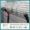 430 Stainless Steel Concertina Razor Wire/Razor Tape Concertina Coil Bto22