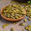Green Shine Skin Pumpkin Seeds Kernels with Grade AA