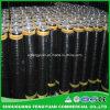 Factory Price Rolling APP/Sbs Bitumen Waterproofing Membrane