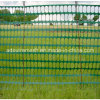 Green Plastic Fence