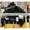 Turbo Charged Cummins 6btaa5.9 Engine for Sany Grader