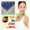 Supply Estrogen Hormone Powder Estradiol CAS: 50-28-2