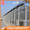 Vegetable/ Flower Aluminum Profiles Glass Greenhouse