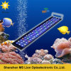 WiFi Intelligent 216W Dimmable LED Aquarium Light