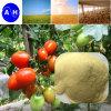 Amino Acid 70% Amino Acid Powder 12-0-0 Liquid Foliar Fertilizer