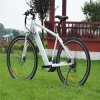 700cc 250W MTB Electric Bike Rseb-304