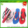 Latest Fashion Lady Slipper for Women (GS-XY1041)