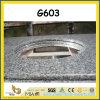 Popular G603 White Granite Vanity Tops for Kitchen/Bathroom