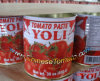 Canned Tomato Paste (YOLI brand)