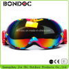 New Design Ski Glasses Fashion Style Ski Goggles