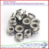 DIN 6923 Good Quality Hex Flange Nut Flange Cap Nut