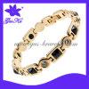 316L Stainless Steel Bracelet (2015 STB-120)