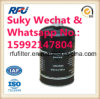 Truck Fuel Filter Auto Parts for Benz 3989632/20450423