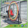 Single Outdoor Adult Gyroscope Ride for Sports