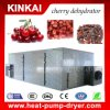 Names of All Dry Fruits Dryer Machine From Kinkai Factory Dehydrator