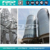 Storage Silo for Poultry Feed Plant with Associated Dedust System