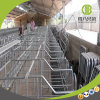 Pig Farm Breeding Equipment Individual Pig Gestation Stall