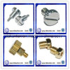 Round Head Knurled Screw / Slotted Round Head Screw (DKL-S001)