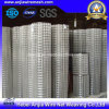 Hot-Dipped Galvanized Welded Wire Mesh with (CE and SGS)
