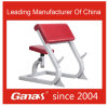 Ganas Fitness Equipment Weight Scott Bench (MT-6039)