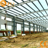 Economical Fast-Assembling Prefabricated Warehouse (pH-01)