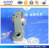 Ball Bearing Block Bearing Pillow Block Bearing UCP311