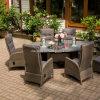 Patio Rattan Furniture Wicker Dining Set (DH-8620)