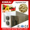 New Designed Batch Type Vegetable Dryer