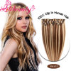 Wholesale Hair New Products Virgin Remy Hair Clip in/on Human Hair Extension
