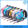 Factory Wholesale Cheap 5m Retractable Pet Lead Dog Leash