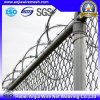 Hot Dipped Galvanized Razor Barbed Wire for Safe Guard