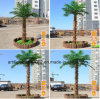 Outdoor Garden Decoration Artificial Coconut Palm Trees