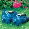 100% Copper Wire 0.5HP Js60 Jet Electric Water Pump