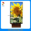 5.7 Inch TFT LCD Screen with Touch Panel