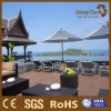 High Quality Anti UV/ Hot Solid WPC Composite Decking