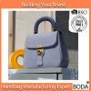 Customized 2017 Leather Lady Delicate Designer Women Handbags (BDX-161013)