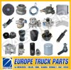 Iveco Daily Truck Spare Parts
