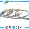Bedroom light 12V SMD 3528 CCT Adjustable LED Strips