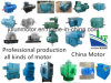 Asynchronous Motors/ Electric Motor/ Ht High Tension Motor/ Hv High Voltage Motor/Induction Motor/AC Motor