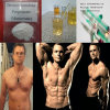 Injectable Drostanolone Propionate 521-12-0 Masteron for Lean Muscle Gain