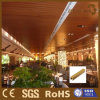 Professional Eco-Wood Ceiling Applied in Kinds of Building Style
