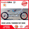 26 Inch Tandem Fat Bike Fat Tire Double Seat Bike Two Person Bike Fat Tire