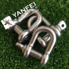 D Type Shackles G210 with Round Pin
