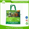 Special Design Custom Printing Lamination PP Grocery Bag