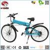 Wholesale Fashion Electric Mountain Bike Disk Brake Bicycle Pedal MTB E-Bike Vehicle